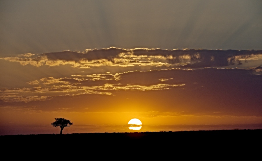 Sunrize in Masai Mara